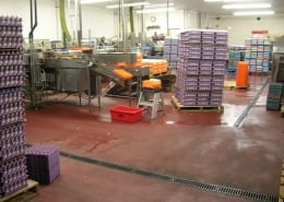 Willamette Egg Farms polyester flooring installation Oregon