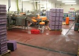 Willamette Egg Farms polyester flooring installation Oregon