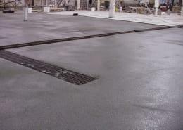 Rainsweet onion processing polyester flooring install